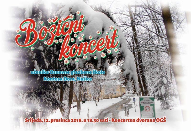 """""""Božićni koncert"""" učenika glazbene škole"""