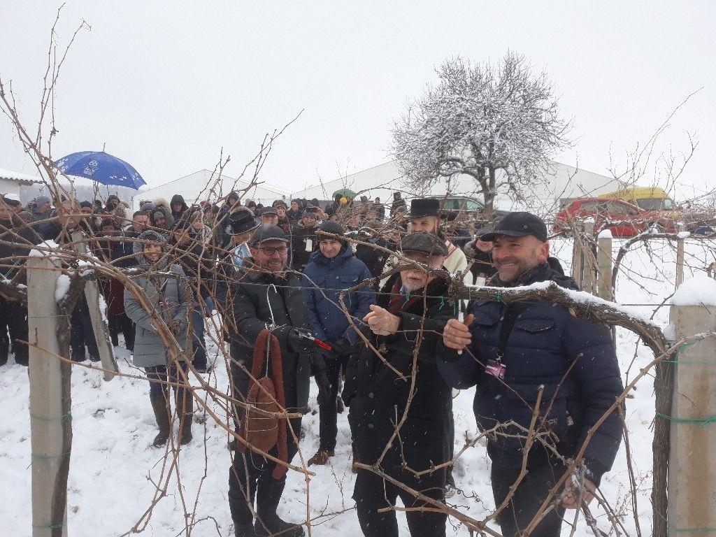 Središnja proslava Feričanačkog vinca u Božilovcu