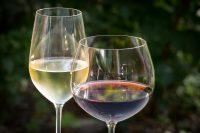 Udruga voćara i vinogradara organizira  Vinonu 2019.