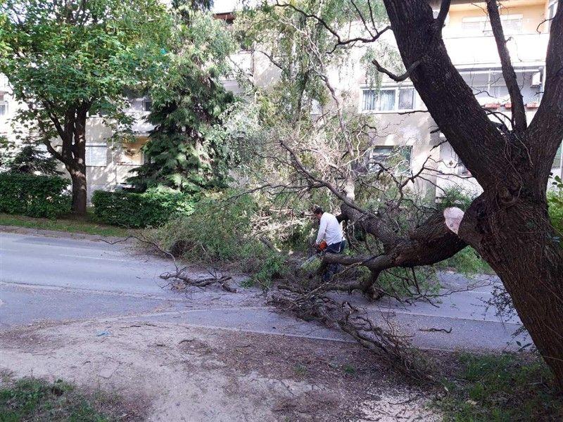 Promet kroz Sokolsku ulicu zatvoren do 15 sati