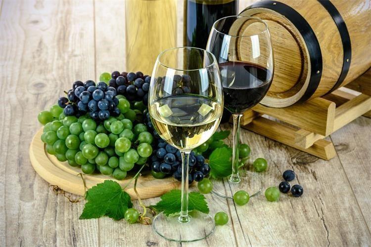 Otvoren natječaj za vinare