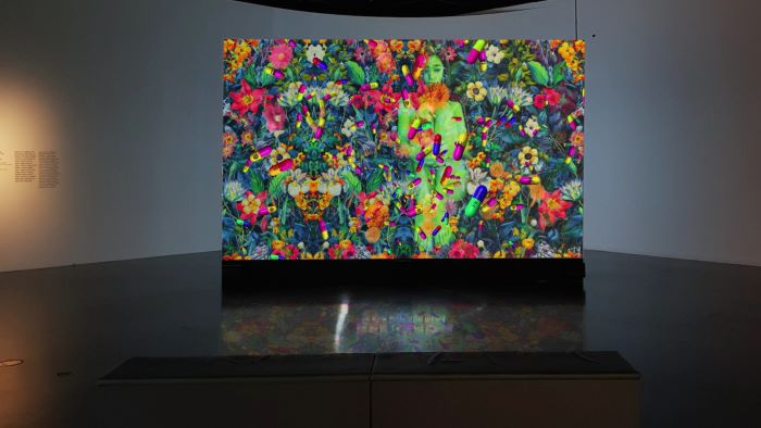 27. slavonski biennale: Slika kao virus